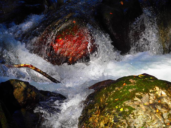 天安河原へ続く道を横断する川の流れ