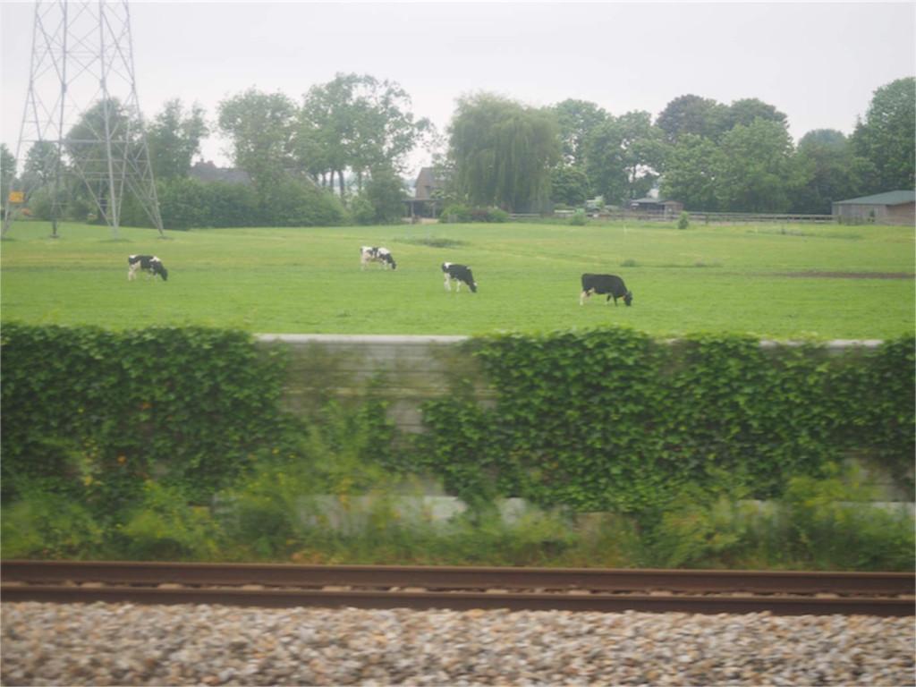 電車乗り間違えて田園地帯へ・・・